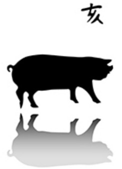 Année du Cochon 2019 Af_chi07_12_cochon